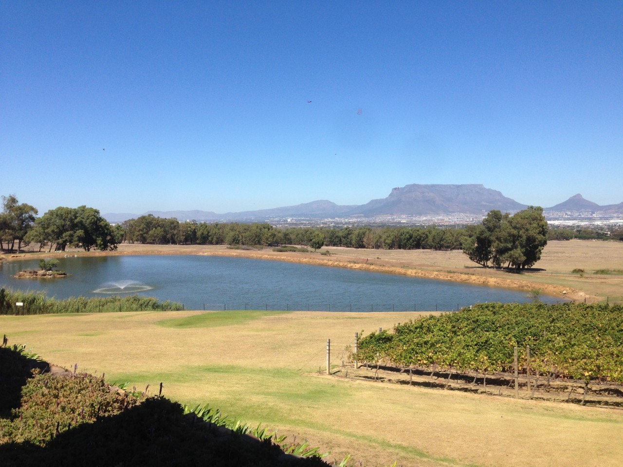 South Africa WineCountry